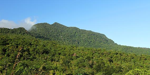 Gunung Mbeliling